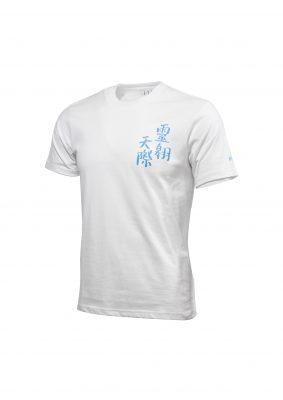 美國進口Gildan Shirt